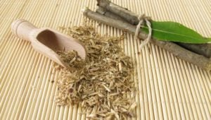 Herb of the Week: Willow Bark