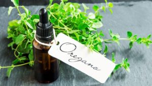 3 Reasons to Try Oil of Oregano