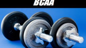 The Power of BCAA