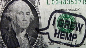 Celebrate Hemp History Week…It's time to grow