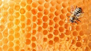 4 Great Uses for Beeswax