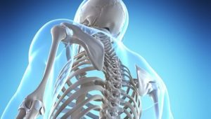 4 Essential Supplements for Bone Health