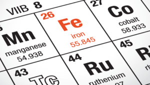 7 Good Sources of Iron