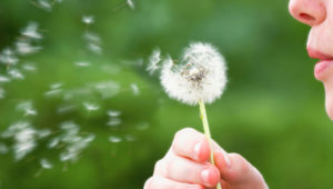 Don't Let Allergies Slow You Down! Find Relief with Homeopathic Medicines