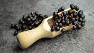 Elderberry And The Immune System