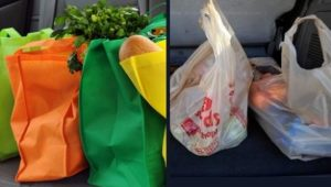 Join the Movement: Reusable Shopping Bags