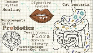 The Benefits of a Probiotic
