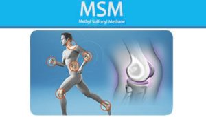Reduce Joint Pain with MSM