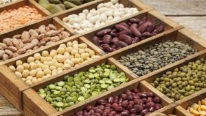 7 Protein Sources for a Plant-Based Diet