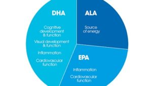 DHA, EPA & ALA: How Much Do You Actually Need?
