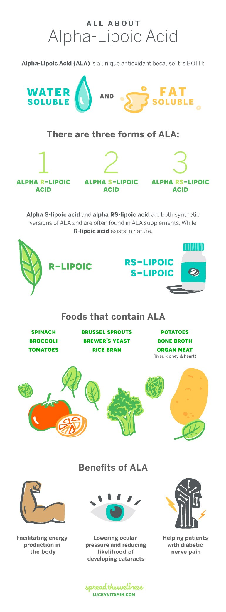 Alpha Lipoic Acid all about